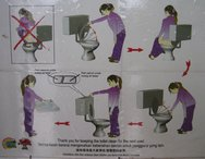 The ever useful toilet instructions, incase you forget!