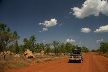 Impressive termite mounds