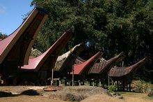 Torajan huts in Sulawesi